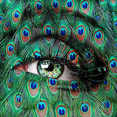 Face Photograph - Peacock by Yosi Cupano