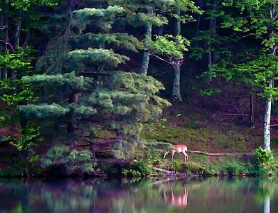 Water Painting - Peaks Of Otter Deer by John Haldane
