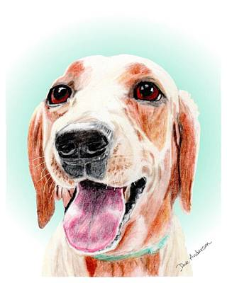 Animal Shelter Drawing - Peanut A Former Shelter Sweetie by Dave Anderson