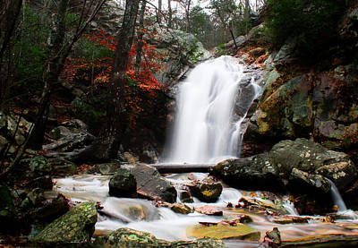 Peavine Falls In Autumn Print by Shelby  Young