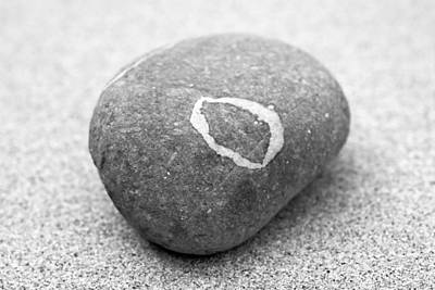 Photograph - Pebble by Frank Tschakert