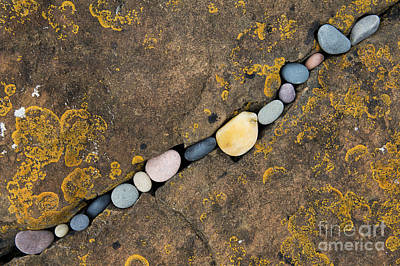 Lichen Photograph - Pebbles And Rock by Tim Gainey