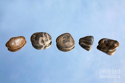 Pebbles And Sky Reflection Print by Natalie Kinnear