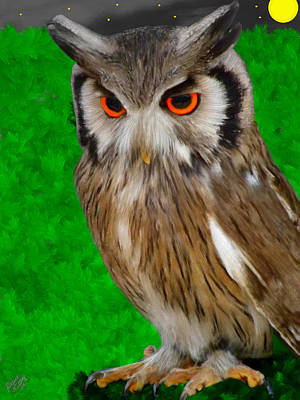 Owl Painting - Peering Owl by Bruce Nutting