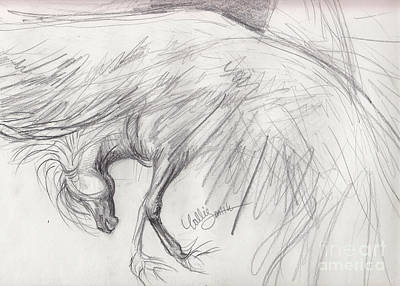Pegasus Drawing - Pegasus Sketch by Callie Smith