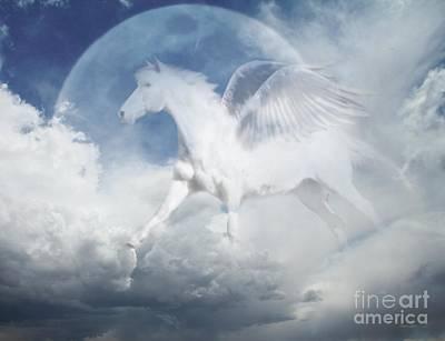 Pegasus Photograph - Pegasus by Stephanie Laird