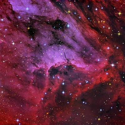 Ic Images Photograph - Pelican Nebula by Tony & Daphne Hallas