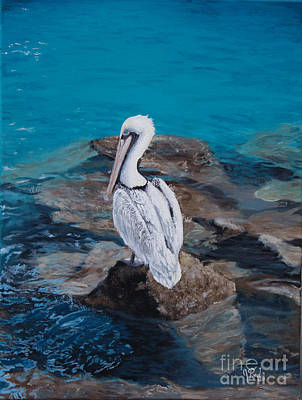 Sea Birds Painting - Pelican On The Rocks by Jeremy Reed