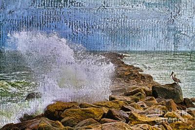 Pelican Pier Perch Print by Deborah Benoit