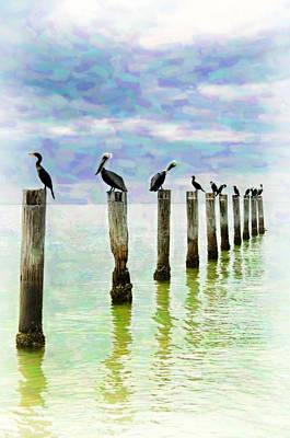 Pelican Postcard Print by Vicki Jauron