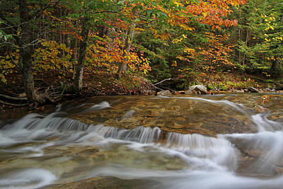 Landscapes Photograph - Pemigewasset River Cascades In Autumn by Juergen Roth