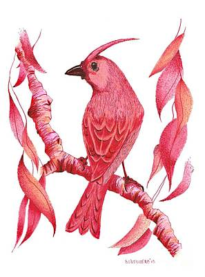 Red Drawing - Pen And Ink Drawing Of Red Bird by Mario Perez