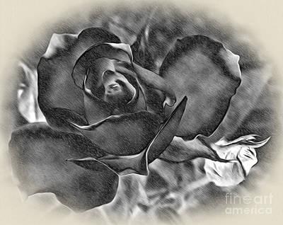 Raspberry Digital Art - Pencil And Ink Rose by Kaye Menner
