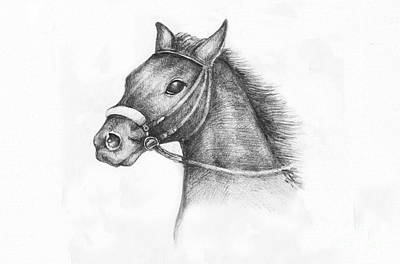 Paper Images Drawing - Pencil Drawing Of A Horse by Kiril Stanchev
