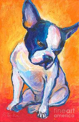 Impressionistic Dog Art Drawing - Pensive Boston Terrier Dog  by Svetlana Novikova