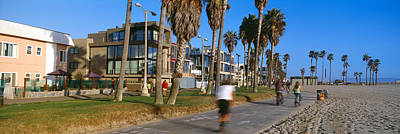 Venice Beach Photograph - People Riding Bicycles Near A Beach by Panoramic Images