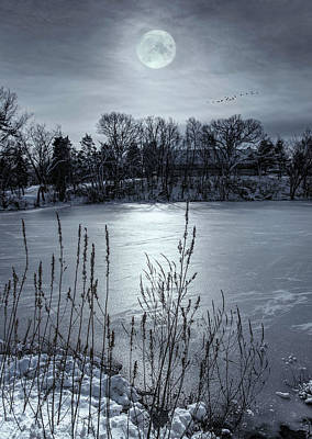 Lee Winter Photograph - Peppermint Moon by Robin-lee Vieira