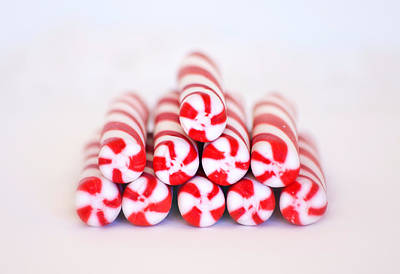 Eve Photograph - Peppermint Twist - Candy Canes by Kim Hojnacki