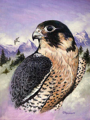 Peregrine Falcon Original by Richard De Wolfe