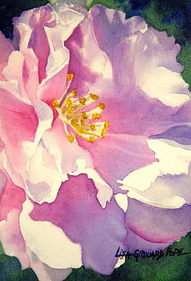 Rose Of Sharon Painting - Perfectly Pink by Lisa Pope