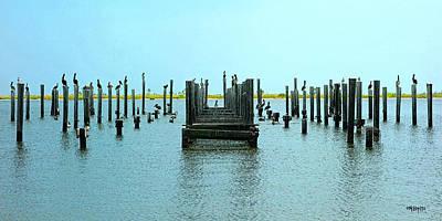 Coastal Photograph - Pelican Perch - Gulf Coast Shorebirds by Rebecca Korpita