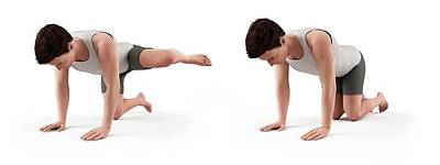 Person Exercising Print by Sebastian Kaulitzki