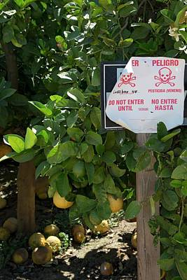Pesticide Warning Sign Print by Jim West