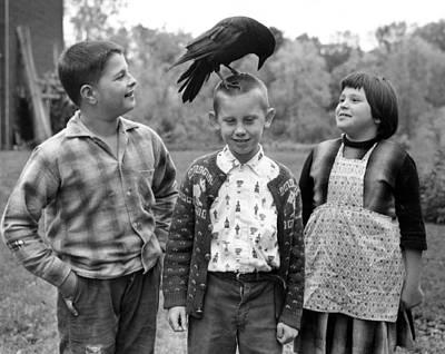Zipper Photograph - Pet Crow by Retro Images Archive