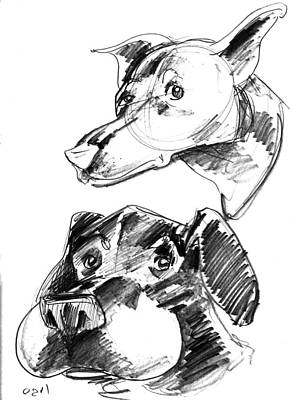 Super Dog Drawing - Pet Sketches 5 by Big Mike Roate
