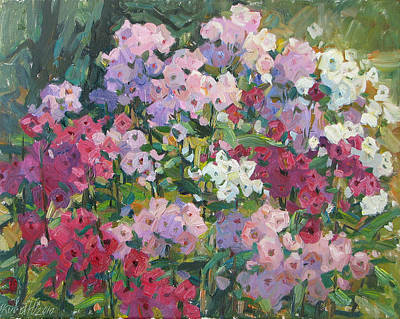 Phlox Painting - Phloxes by Juliya Zhukova