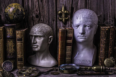 New Mind Photograph - Phrenology Still Life by Garry Gay