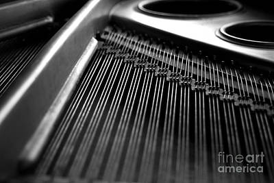 Piano Strings Print by Tim Hester