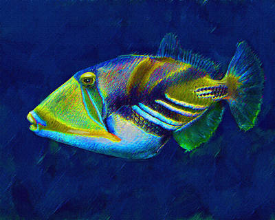 Triggerfish Digital Art - Picasso Triggerfish by Jane Schnetlage