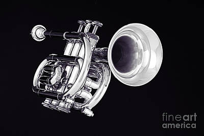 Trumpet Photograph - Piccolo Trumpet Isolated In Black And White 3020.01 by M K  Miller
