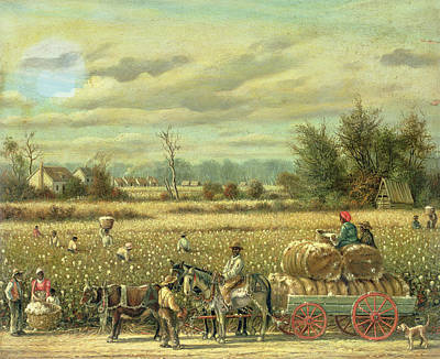 Horse And Cart Painting - Picking Cotton by William Aiken Walker