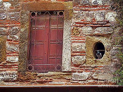 Pigeon Hole Print by Lou Ann Bagnall
