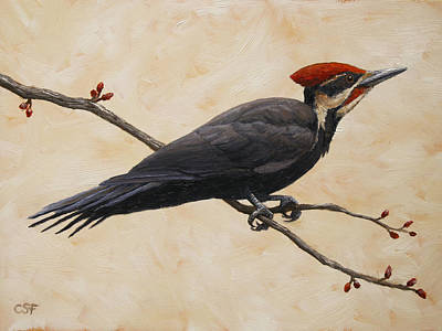 Woodpecker Painting - Pileated Woodpecker by Crista Forest