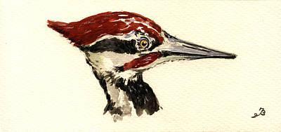 Woodpecker Painting - Pileated Woodpecker Head Study by Juan  Bosco