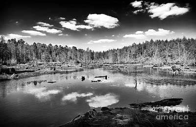New Jersey Pine Barrens Photograph - Pine Barrens Lake by John Rizzuto