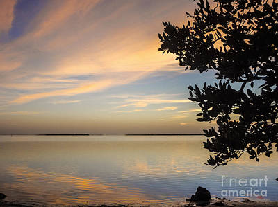 Pine Island Florida Liquid Gold Sunset Print by Ginette Callaway
