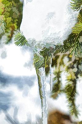 Digital Photograph - Pine Snow And Ice by J Michael Nettik