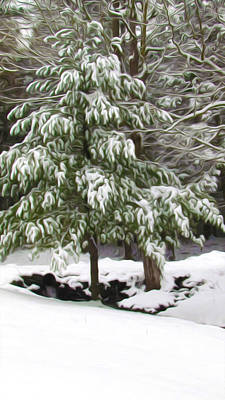 Twiggy Painting - Pine Tree Covered With Snow 2 by Lanjee Chee
