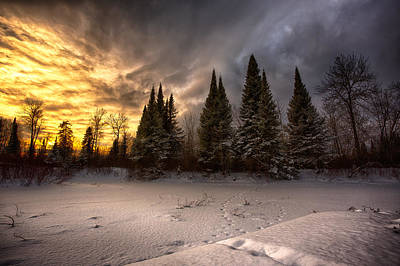 Snow Forts Photograph - Pinewood River by Jakub Sisak