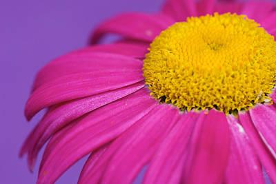 Pink And Purple Smile Print by Lisa Knechtel