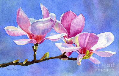 Pink And White Magnolias With Background Print by Sharon Freeman