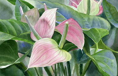 Anthurium Painting - Pink Anthurium by Sharon Freeman