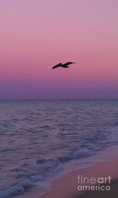 Beauty Photograph - Pink Beach Sunset by Charlie Cliques