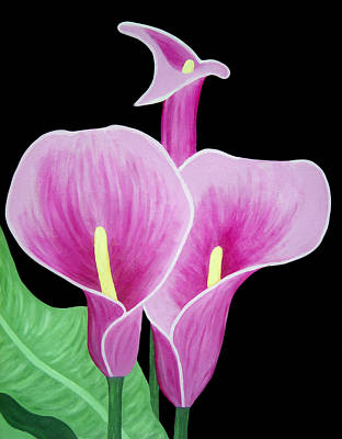 Pink Calla Lilies 1 Print by Angelina Vick