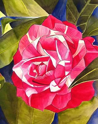 Pink Camellia Original by Sacha Grossel
