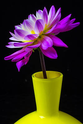 Pink Dahlia In Yellow Vase Print by Garry Gay